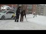 Полицейский из Казани помог инвалиду перейти дорогу