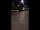 Анитик Герасимова Live