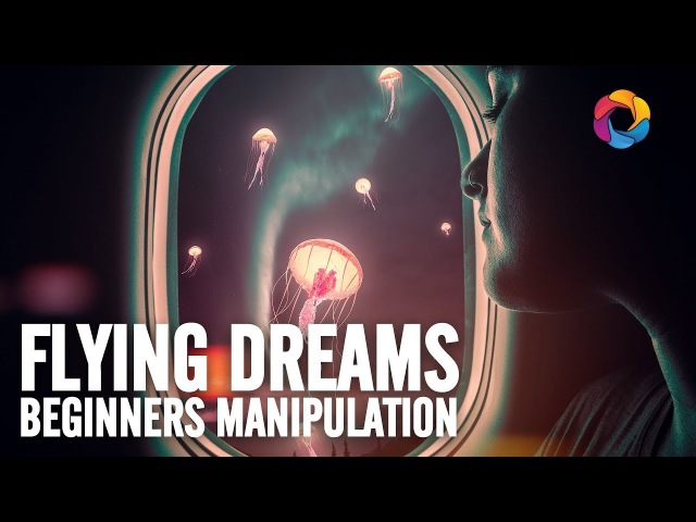 Flying Dreams Beginners Manipulation