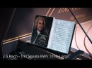 J.S.Bach - Trio Sonata BWV 1079 (Musical Offering), Largo. Gnessin Baroque