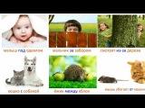 Предлоги. Изучаем русский язык. Части речи. Развивающие карточки для детей