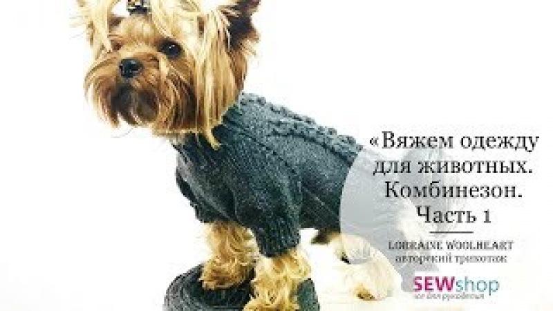 Вяжем одежду для животных спицами. Комбинезон. Часть 1 вместе с Lorraine Woolheart