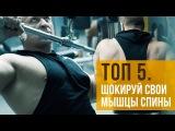 ТОП 5 - Нестандартные упражнения на спину от Алексея Борисова
