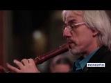 Bach - Recorder Concerto BWV1052 (M