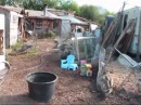Idaho Hillbilly Homestead Checking' N Talking Garden Beds Permaculture and what we are up to