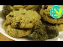 CHEWY Canna Chocolate Chip Cookies aka WEED Cookies music