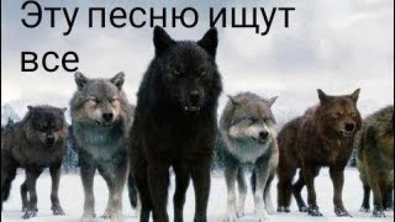 Сумерки)