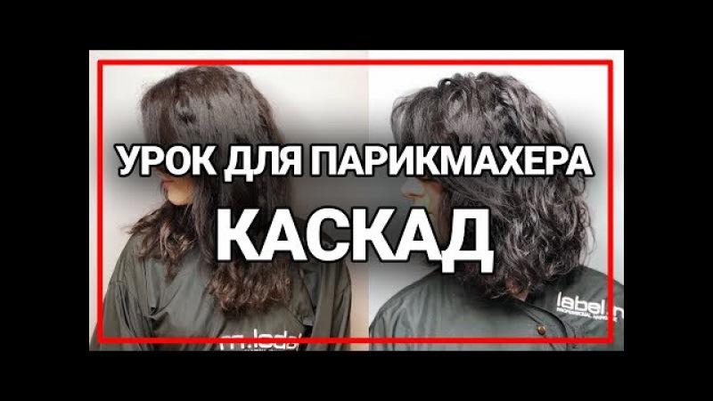 Как подстричь длинные вьющиеся волосы? каскад лесенка женская стрижка урок для парикмахера
