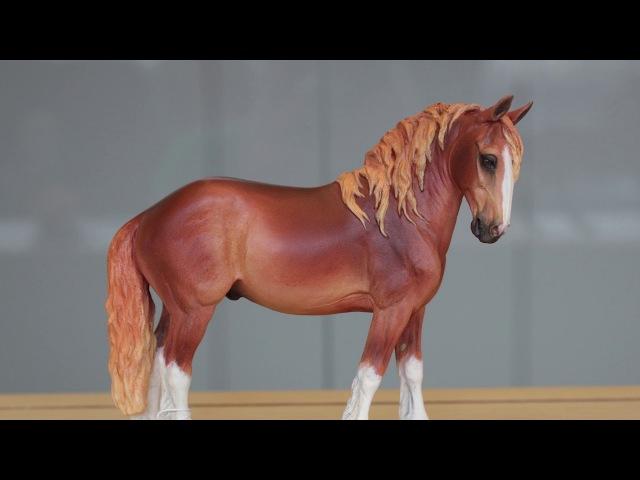 Шоу конной миниатюры