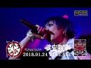 コドモドラゴン10th OnemanTour Final「毒虫強襲」LIVEDVD SPOT