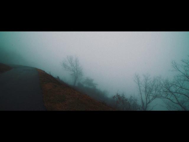 ピコン - 君の脈で踊りたかった ft. 初音ミク