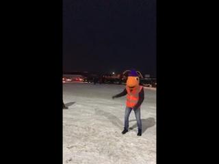 Танец АвтоЁлка Жига-Дрыга