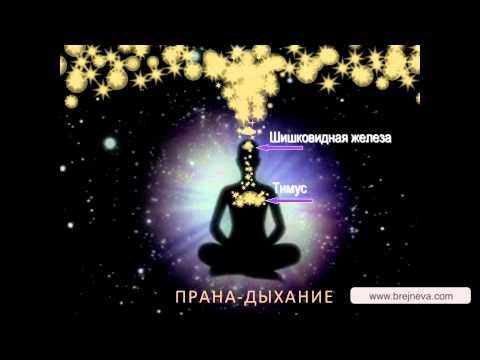 Медитация Прана-дыхание