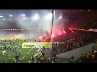 1хСтавка: Фанаты «Янг Бойз» празднуют чемпионство