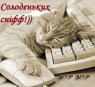 Кот,спокойной ночи!,сладких снов!,приятных снов!,