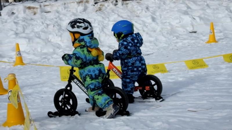 Беговелогонка на лыжах 11 марта