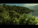 Мадагаскар Земля, где эволюция шла своим путём - Затерянные миры 2011 HD 720