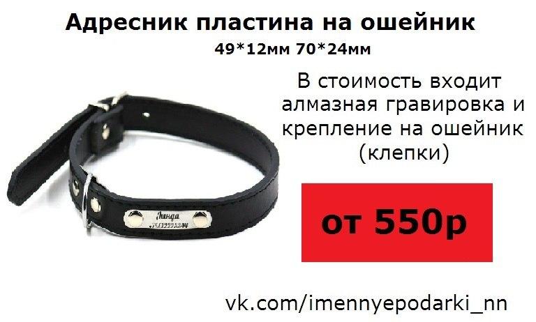 Ксения Глушкова   Нижний Новгород