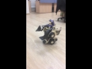 Трансботы - чумовые машинки на пульте ДУ