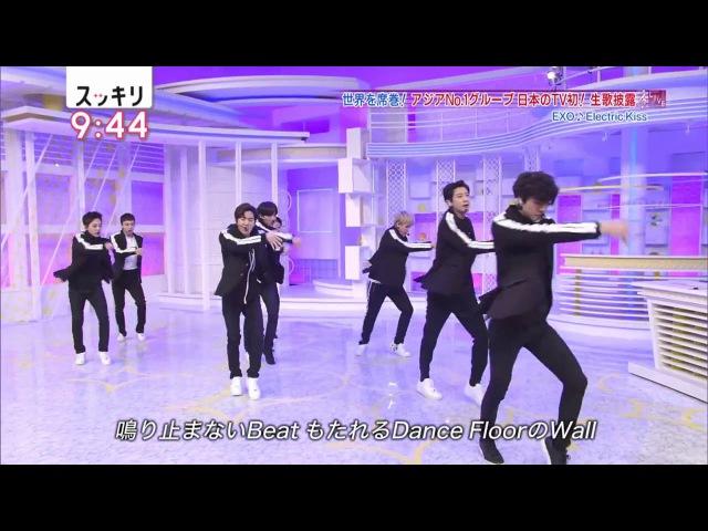[180126] リード曲 Electric Kiss @ スッキリ (Sukkiri)
