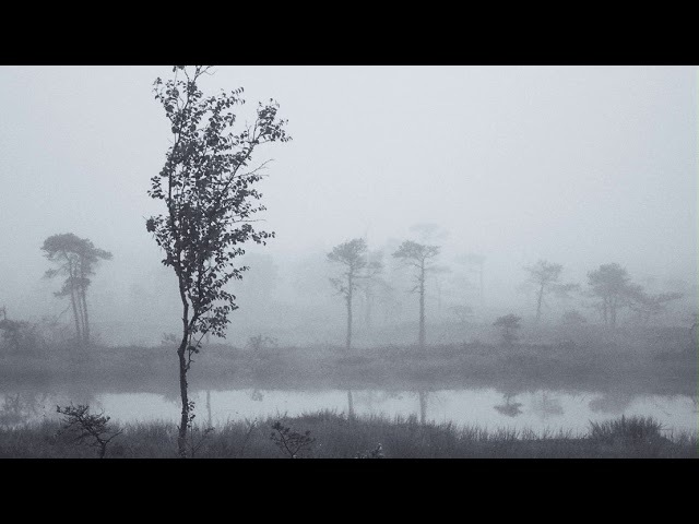 Jaymes Young — Moondust (Instrumental)