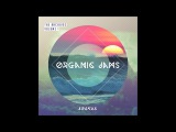 Abakus - The Archives Vol 1 Organic Jams Full Album