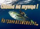 Опасная Подводная охота на Тунцов - на грани возможного !