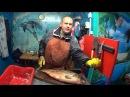 Речной монстр. Сазан 8,8кг. Правильная разделка крупной рыбы