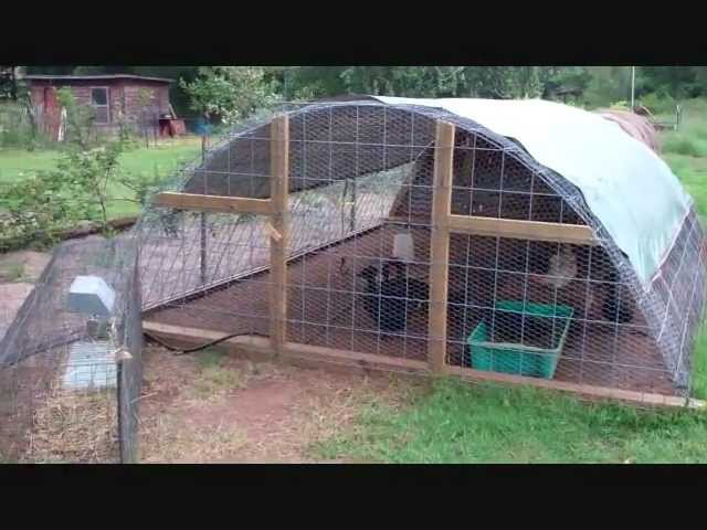 Texas Prepper's Greenhouse