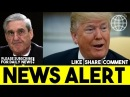 Donald Trump Delivered The One Message Robert Mueller Never Wanted To Hear