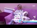 Дом 2 Lite 66 сезон Дом 2 Подложила собаку