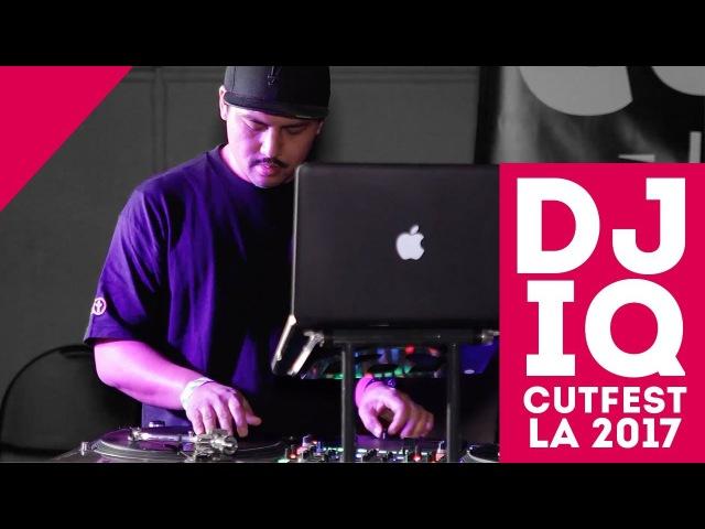 DJ IQ Showcase