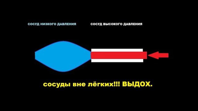 Работа кровеносных капилляров ВНЕ ЛЁГКИХ
