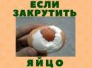 Крутим яйцо. Как варить яйцо желтком наружу. Правдивый эксперимент.
