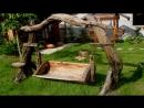 Мебель для сада и дачи из пеньков веток коряг и дерева своими руками Садовые мебельные идеи 2015