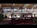 Trip in Pripyat 3. 1080p. 7Mbps