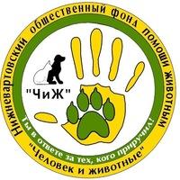 chizh_nv