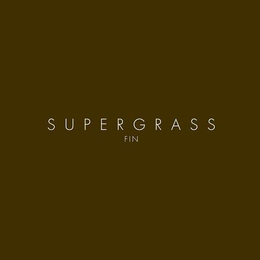 Supergrass альбом Fin