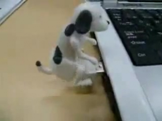 USB Ебалка
