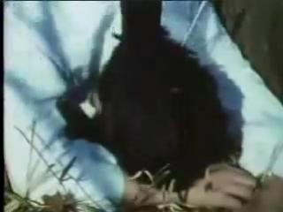Himitsu Sentai Goranger - 03 - Large Counterattack! Yellow Whirlwind