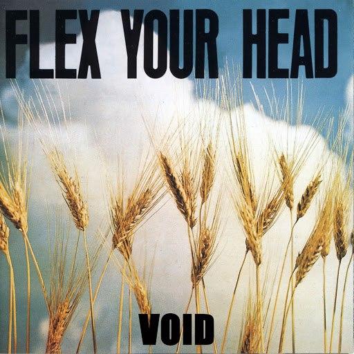 Void альбом Flex Your Head