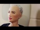 Робот София отправилась на экскурсию по Абу-Даби