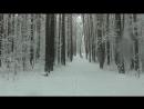 зимняя сказка 24 апреля