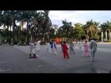 Китайские старушки занимаются тайцзицюанем