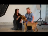 Holly: Broward County Animal Care and Adoption