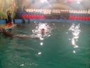 Дельфин и русалка не пара.