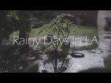 Rainy Days in LA // Sony a6000