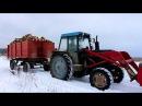 Вывоз дров зимой ЛТЗ 60АВ и Десятикубовка