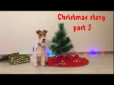 The Wire Fox Terrier Taffy Christmas Story Part 3 Dog Tricks Рождественская История Тэффи