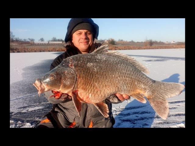 ЗИМНИЕ КАРПЫ МОНСТРЫ.Открытие сезона подледной рыбалки 2018
